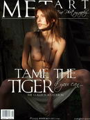 Tame The Tiger 04